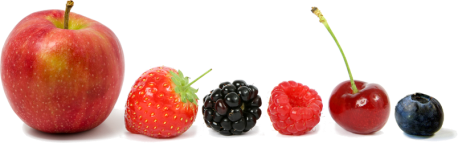 fruit_line_blow_small.png